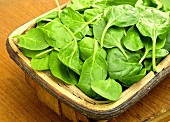 Fresh spinach leaves in a basket