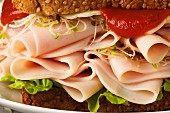 Turkey sandwich with sprouts and ketchup (close up)