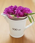 Sieve with purple flowers in measuring jug