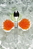 Salmon caviar in shells on ice
