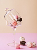 Macaroons under a glass cloche