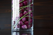 Red onions for pickling in a glass