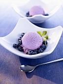Blueberry ice cream with fresh blueberries