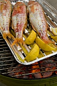 Triglia alla griglia (grilled red mullet with rocket butter)