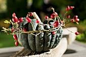 An ornamental pumpkin with a wreath of rose hip twigs