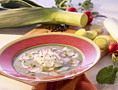Cream of leek soup with cream cheese dumplings and radishes