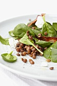 Spinach salad with lentils, goat's cream cheese and bacon