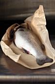 Roher Fisch im Papier