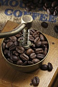 Coffee beans in an old fashioned hand coffee grinder