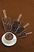Verschiedene Kaffeesorten in Löffeln um eine Kaffeetasse aufgereiht