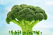 Broccoli with peas underneath