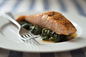 Salmon filet on spinach
