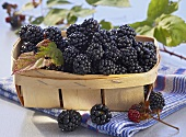 Blackberries in a woven chip basket