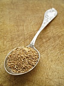 Cane sugar on a spoon