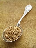 Cane sugar on a spoon