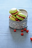 Macaroons with rhubarb-red currant jam