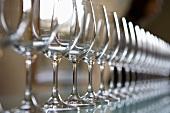Reihe von leeren Weingläsern für die Weinverkostung (Weingut Chateau Lynch-Bages, Frankreich)