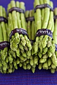 Bunches of green asparagus