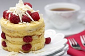 A mini sponge cake with white chocolate and raspberries