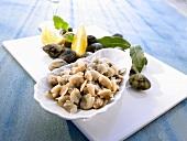 Fresh Venus clams, some shelled