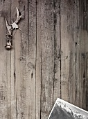 Geweih mit Edelweiss und Postkarte auf Holzuntergrund