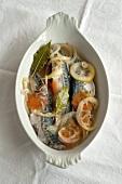 Makrelen in Weisswein eingelegt