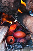 Tamarillos being baked in a cooking pit