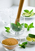 Ingredients for mojito (brown sugar, limes, mint)