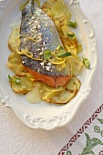 Torta al limone (Lake Garda salmon in lemon sauce, Italy)