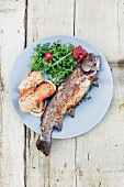 Grilled fish on a plate with toasted bread and a rocket salad