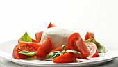 Tomatoes with mozzarella and basil on plate