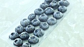 Frozen blueberries in a row