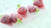 Frozen strawberries on ice
