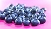Fresh blueberries on purple background