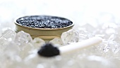Spoonful of black caviar on ice, tin of caviar behind