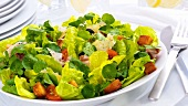 Mixed salad leaves with tomatoes, croutons and Parmesan