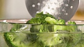 Blanching broccoli: quenching the vegetables in iced water