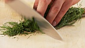 Dill being chopped