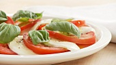 Insalata caprese (tomato, mozzarella and basil salad)