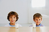 Two brothers with glasses of milk