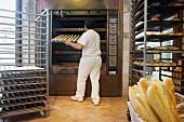 Oven, bakery, Donostia, San Sebastian, Gipuzkoa, Euskadi, Spain