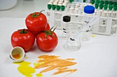 Functional biomolecules in food extraction, Tomatoe extract, Euskadi, Spain