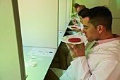 Sensory analysis of foodstuffs