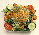 Green Salad with Sprouts; Plastic Container