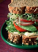 Vegetable Sandwich on Whole Wheat