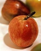 Ein frischer roter Apfel vor zwei anderen Äpfeln (unscharf)