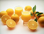 Two Glasses of Orange Juice with Fresh Oranges