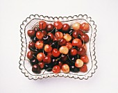 Four Kinds of Fresh Cherries in a Bowl