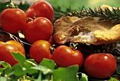 Frische Tomaten, Focaccia & Rosmarinzweig