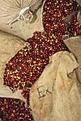 Coffee Beans in Burlap Sacks
